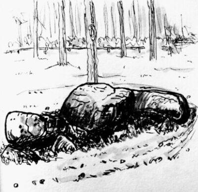 D05 Zeijen 01 Hunebedden in inkt